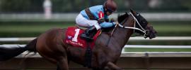 kentucky derby pferd